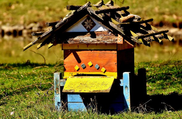 Healthy properties of honey
